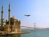نهضت اسلامی ترکیه الگوی پیشتاز